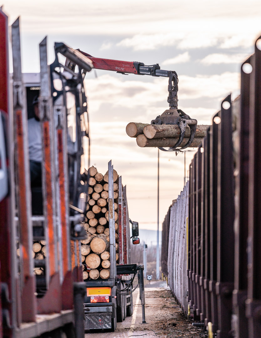 Truck loads a train with wood
